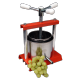 Juice Extraction