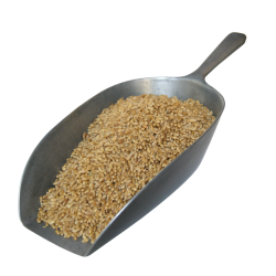 Whole Unmalted Wheat - 500g